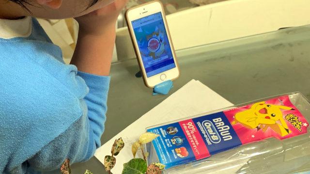 電動歯ブラシ表紙